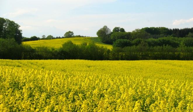 Ūkininkaujančius nepalankiose vietovėse pasiekė 28 mln. Eur paramos
