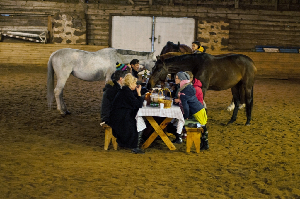 """""""Folkšoko'2017"""" pristatyme – pietūs su žirgais: šoką keitė džiaugsmas (nuotr.)"""