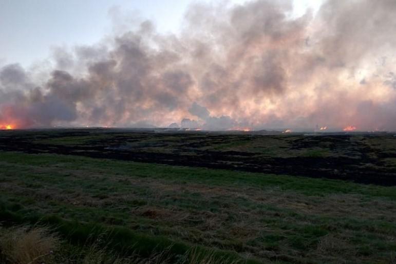 Ugniagesiai perspėja: deginsi žolę – baudą mokėsi!