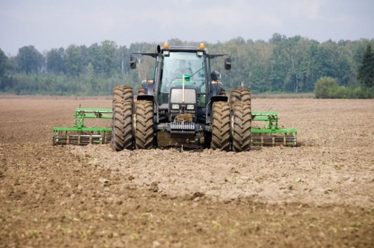 Patvirtinti paramos už pasėlius ir ūkinius gyvūnus išmokų dydžiai